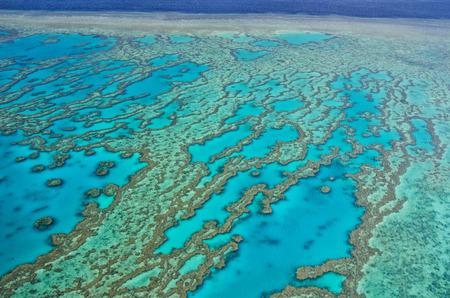 Great Barrier Reef Aerial View of Ocean Coral